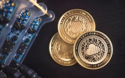 Cryptocurrency 101: How to make it big in altcoins