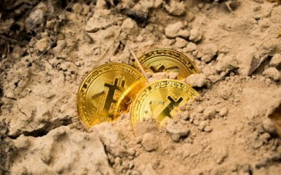 Cryptocurrency crash: Is now the time to buy?